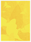 Designvorlage Schmetterling Gelb - Innenseite rechts
