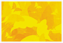 Designvorlage Schmetterling Gelb - Umschlag