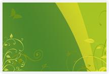 Designvorlage Grün - Umschlag