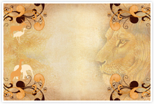 Designvorlage Safari2- Umschlag